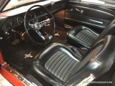 1966_Ford_Mustang_MD_2020-03-09.0009.JPG